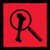 Trofeo Zoólogo - Red Dead Redemption 2