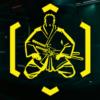 Trofeo Guerrero universal - Cyberpunk 2077